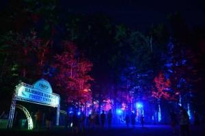 Firefly Music Festival - Day 1