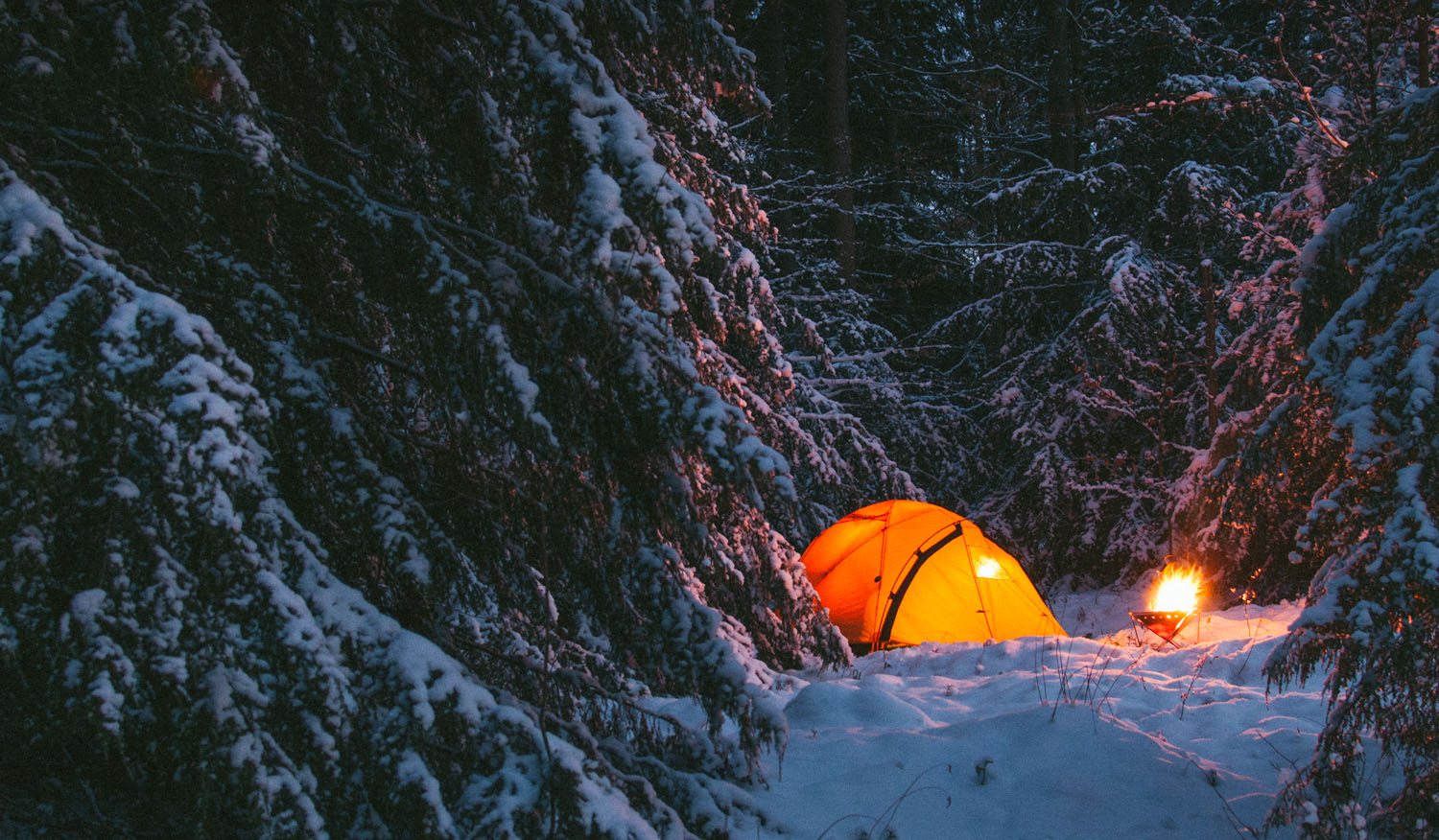 & Gear Feature: Backcountry Dome Tent - Camp Trend