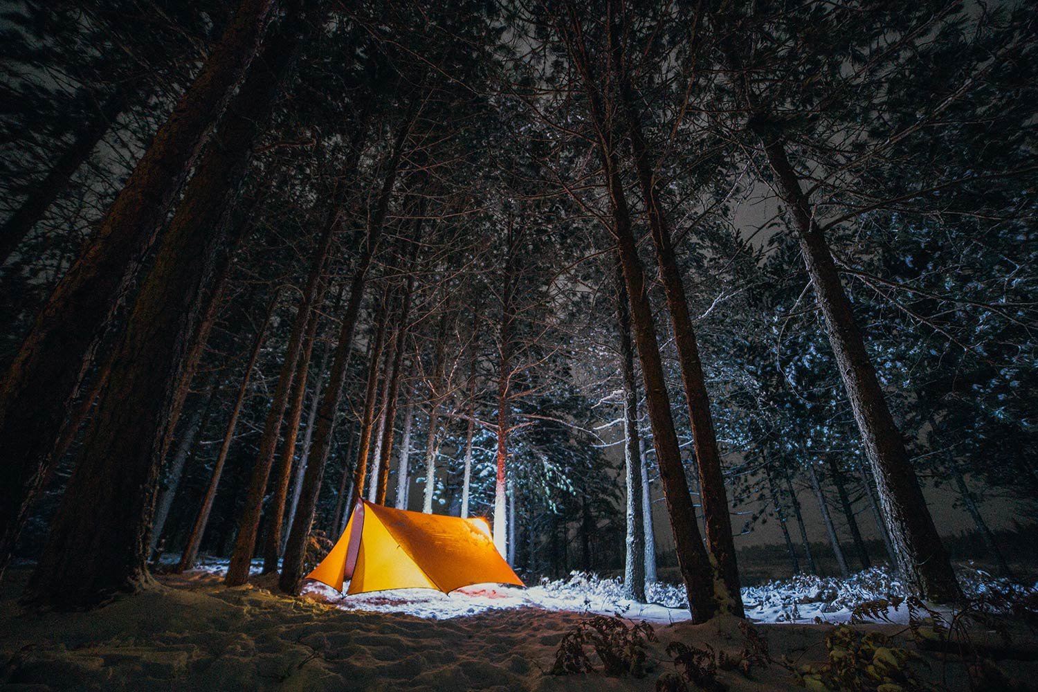 Tent In The Woods : Weekender embrace the night camp trend