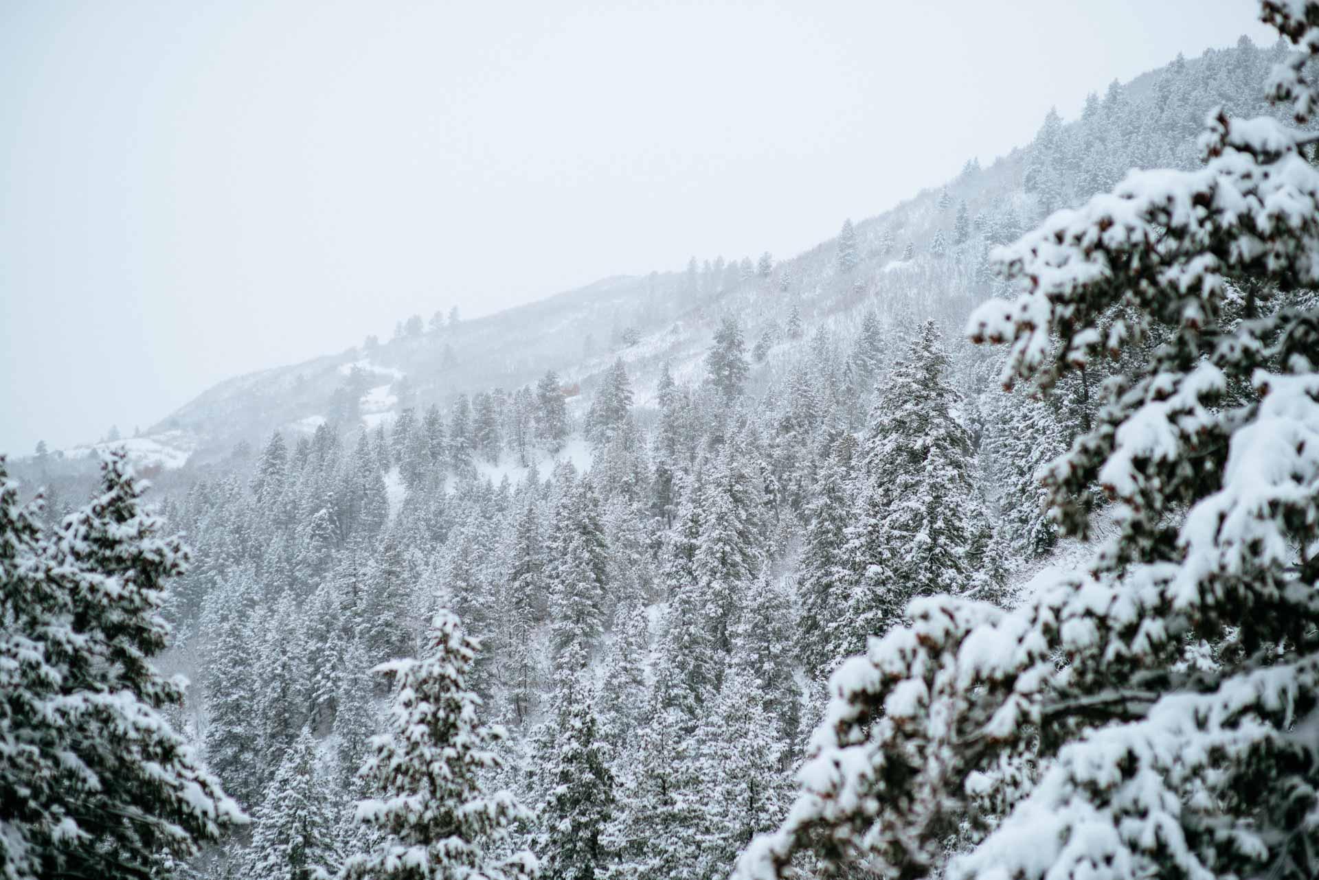 Camp Style - Durango Winter-9 - web1920