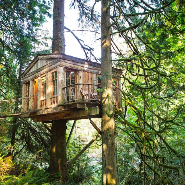 Treehouse Point 2 - CampTrend - CampLuxe