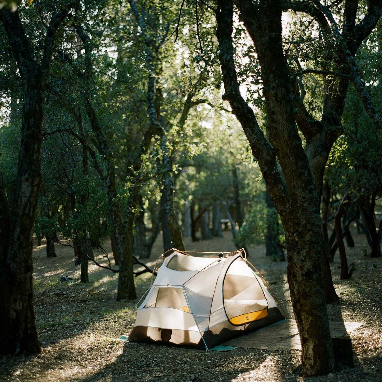 Albany-Katz-Figueroa-CampTrend