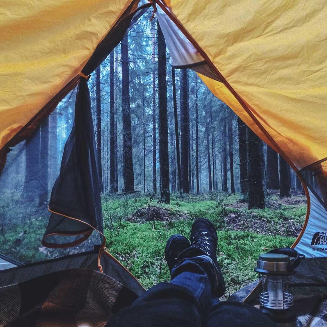 Igor-Cibulsky-Pine-Forest-Front-Door-CampTrend