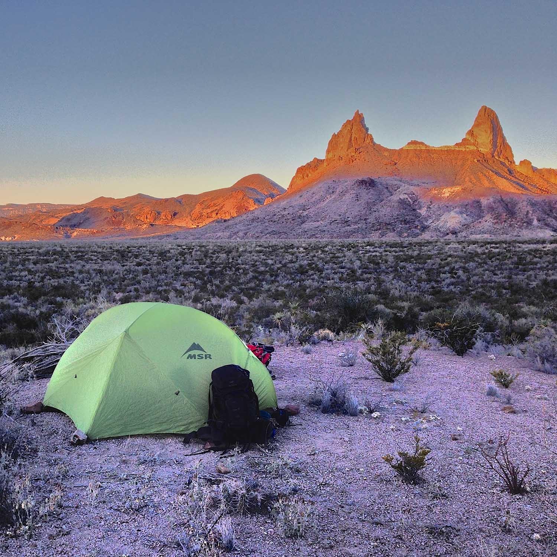 MuleEars_BigBendNationalPark©TaylorReilly_CampTrend