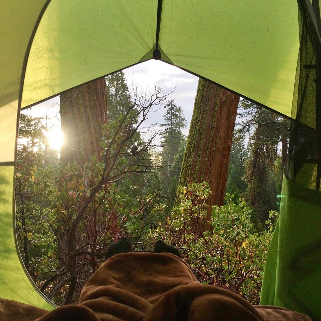 Steve-Paul-Crisp-Morning-Air-camptrend