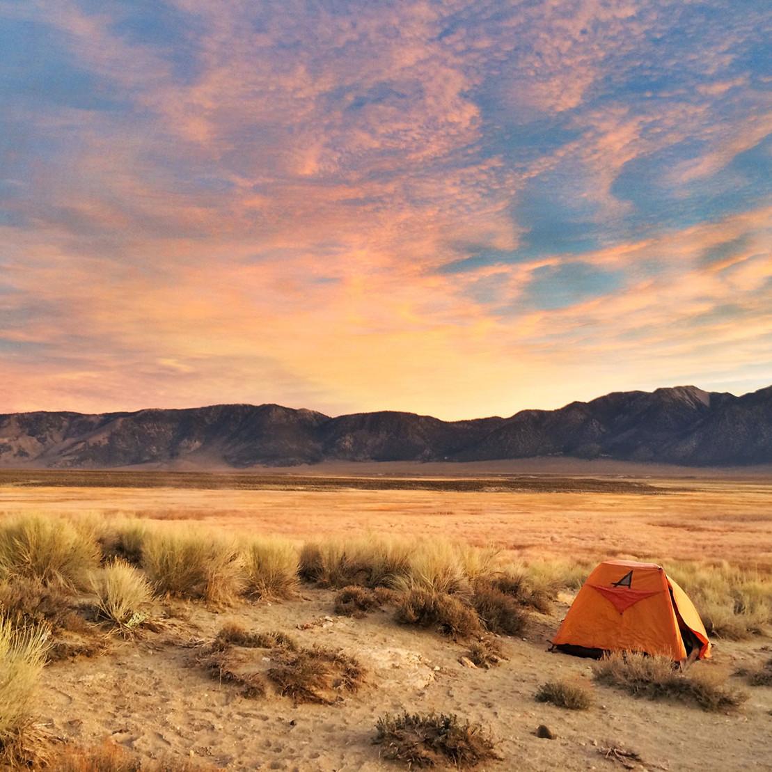 rylee-owens---dawn-patrol---camptrend